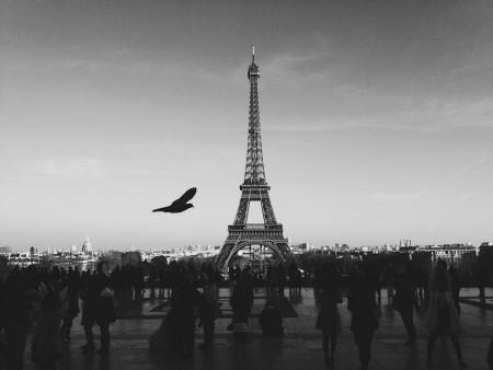 UN-Klimakonferenz 2015 in Paris (Quelle: Librestock)